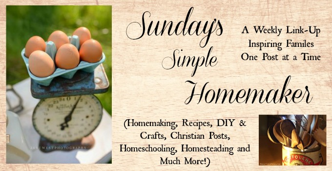 Sunday's Simple Homemaker Party #3